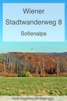 Heart Of Europe, Vienna, Hiking, Mountains, Ursula, Places, Summer, Restaurants, Destinations