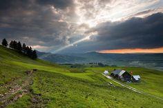 Beinahe mystisch wirkt die Schweizer Berglandschaft unter den gigantischen grauen Wolkentürmen hinter denen sich das helle Sonnenlicht verbirgt. Die Fototapete Alpenzellerland mit Spot von Stefan Arendt zeigt ein spektakuläres Naturschauspiel, das ästhetisch und geheimnisvoll zugleich ist. Display, Mountains, Nature, Travel, Pictures, Mountain Landscape, Photo Wallpaper, Alps, Wallpapers