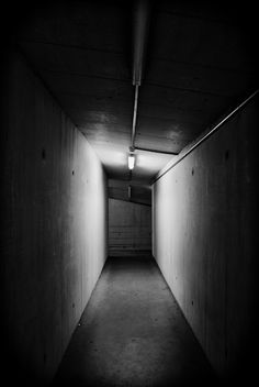 I used to live in an apt at the end of a hallway that basically looked like this--cold and dark. I always figured my family were too scared to visit me because of it. I enjoyed the darkness. The darkness of that hallway was alluring.