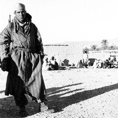 Pin by Paolo Marzioli - Un historien a démonté les théories fumeuses qui prétendent que tous les harkis ont été massacrés après le retrait des troupes françaises en 1962.