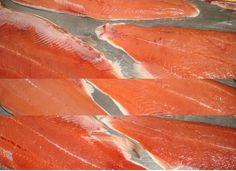 Salmon chum: Frozen Wild Chum Salmon (Oncorhynchus keta) Packing: PP sandwich bag 1/22 kg (2 blocks x 11.0 kg) with PVC liner, ...