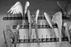 ♕ angel wings on a coat rack ~ via Mea's Vintage