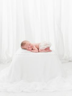 Newborn Photographer Julie Rollins, natural, organic, white, newborn posing, newborn photography, baby led, newborn workshop, los angeles newborn photos, orange county newborn photography