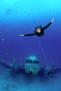This Sunken World War II Plane Is The Perfect Underwater Playground