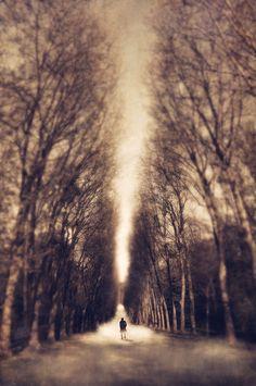 The Passage | Explore dpcom.fr photos on Flickr. dpcom.fr ha… | Flickr - Photo Sharing!