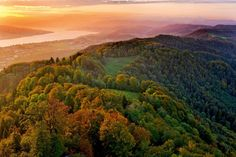 The 10 best things to do in Zurich: from surreal art to food tours Switzerland Tour, Stuff To Do, Things To Do, Sky Mountain, Ski Touring, Medieval Town, Summer Travel, The Guardian, Picture Photo