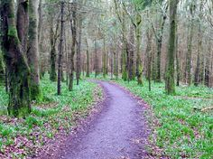 Castleblayney, County Monaghan