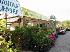 Tri-Star Nurseries and Landscape Supplies | Landscaping Greater Vancouver for over 20 years