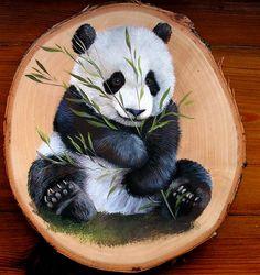 Panda Painting, Wood Painting Art, Pallet Painting, Animal Paintings, Animal Drawings, Rock Painting Designs, Art Drawings Sketches Simple, Diy Canvas Art, Wooden Art