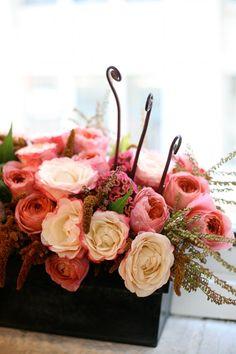 Garden roses grow well in Texas & bloom in July & August