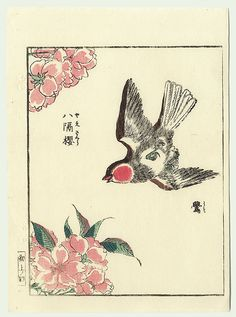Double Cherry and Bullfinch by Shigemasa (1739 - 1820)