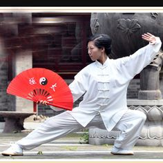 Chinese  Tai Chi Fan