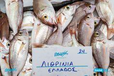 """Ολόφρεσκα Λιθρίνια από τον """"Πσαρά"""" !! Μπορείτε να τα κάνετε ψητά ή στο φούρνο !! #PsarasIxthiopolion #Ψάρια #Thessaloniki"""