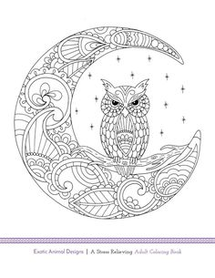 Owl Coloring Pages For Adults Free Detailed Owl Coloring Pages - Owl-coloring-pages-printable