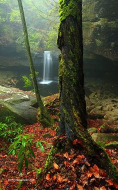 ✯ From The Other Side - Daniel Boone Forest - Kentucky