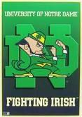 Go Fight'n Irish