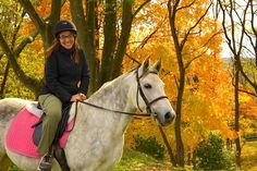 Charming Creeks Farms Fall Gallery