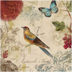 Nature's Rhapsody I Print by Aimee Wilson at Art.com