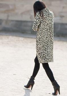 Leopard black and hi