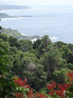 Costa Rica #Vegetarian #vegan #health #healing #wellness #eco #travel #sustainable #yoga #nature