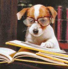 """""""Studying hard"""""""