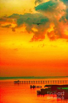 ✯ Chincoteague Island