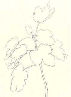Ellsworth Kelly: Fig