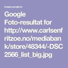 Google Foto-resultat for http://www.carlsenfritzoe.no/mediabank/store/48344/-DSC2566_list_big.jpg