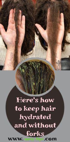 We explain how to keep the hair hydrated and we share with you some tricks so that you always enjoy good hair health. How To Hydrate Hair, Moisturize Hair, Best Masks, Honey Hair, Prevent Hair Loss, Dry Shampoo, Hair Health, Dry Hair, Forks