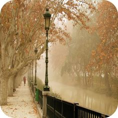 river, fog, fall, love