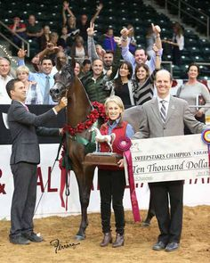 Pitonisa AS - Arabian Horse - Filly - US National Champion Filly