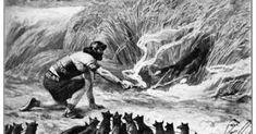 Samson Bible - The foxes on the corn. Samson Bible, Spanish Armada, Most Popular Image, Bible Images, Bible News, Lion Of Judah, Bible Art, Archetypes, Priest