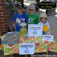 Lemonade Stand for Charity... with checklist