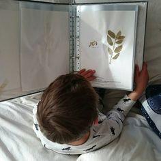Cómo hacer un herbario con niños - Making a herbarium with kids • Montessori en Casa