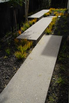 Long ramping steps in exposed aggregate concrete