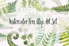 Watercolor Fern Clip Art Set by Tati Bordiu on @creativemarket
