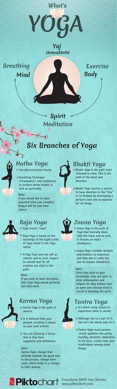 6 Branches of Yoga - Health Yoga,Bhakti Yoga,Raja Yoga, Jnana Yoga & So on.