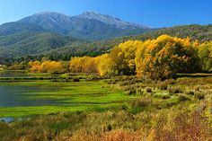 Mount Beauty is nestled at the foot of Victoria's highest mountain, Mount Bogong. © Darren Stones All Rights Reserved Outback Australia, Australia Travel, Western Australia, Melbourne Victoria, Victoria Australia, Tasmania, Places To Travel, Places To See, Parks