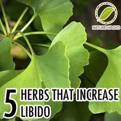5 herbs that increase libido - http://naturehacks.com/herbs/herbs-that-increase-libido/