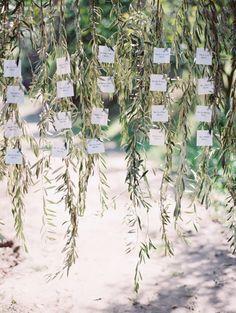 Hanging olive branches for escort cards: http://www.stylemepretty.com/2015/05/14/romantic-minimalism-wedding-inspiration/ | Photography: Kurt Boomer - http://www.kurtboomer.com/
