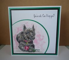 Created by Sharon Goold using Sheena Douglass A Little Bit Sketchy - I Love You. Sheena Douglass, Spectrum Noir, Dog Cards, Flower Stamp, Crafters Companion, Love You, My Love, Embossing Folder, Cat Lovers