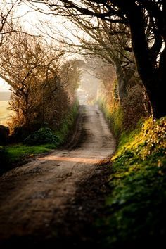 the avenue sark channel islands gy10 1sb great britain email