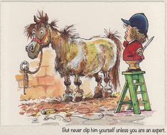 Horse Cartoon, Cartoon Jokes, Funny Cartoons, Funny Comics, Funny Horse Pictures, Funny Horses, Funny Animals, Horse And Human, Horse Sketch