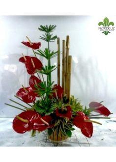 Anturios y Bambú