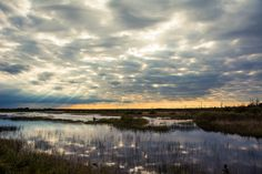 Photograph of the Tuttle Marsh National wildlife area in Michigan.
