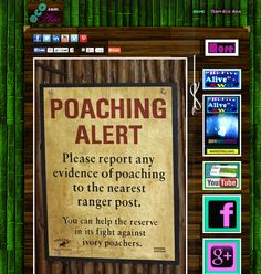 """#POACHING   #SWD   #GREEN2STAY   'Please Stop Poaching""""NOW' http://asiaeco.webs.com/"""