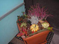 Fall Decor, September, Decorations, Wreaths, Seasons, Fruit, Halloween, Creative, Plants
