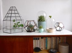 old glass terrariums