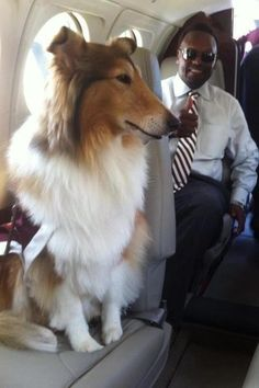 Miss Rev and Coach Sumlin flying in style....