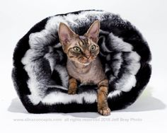 Gifts for Pets Rich Faux Fur Cozy Reversible Cat Cave or Dog Bed.  Gifts for Pet Lovers Luxury Cat Burrow Bed Holiday Gift. by SimplySphynx #etsy #etsyseller #simplysphynx #sphynx #sphynxcat #sphynx #catclothes #sphynxcatclothes